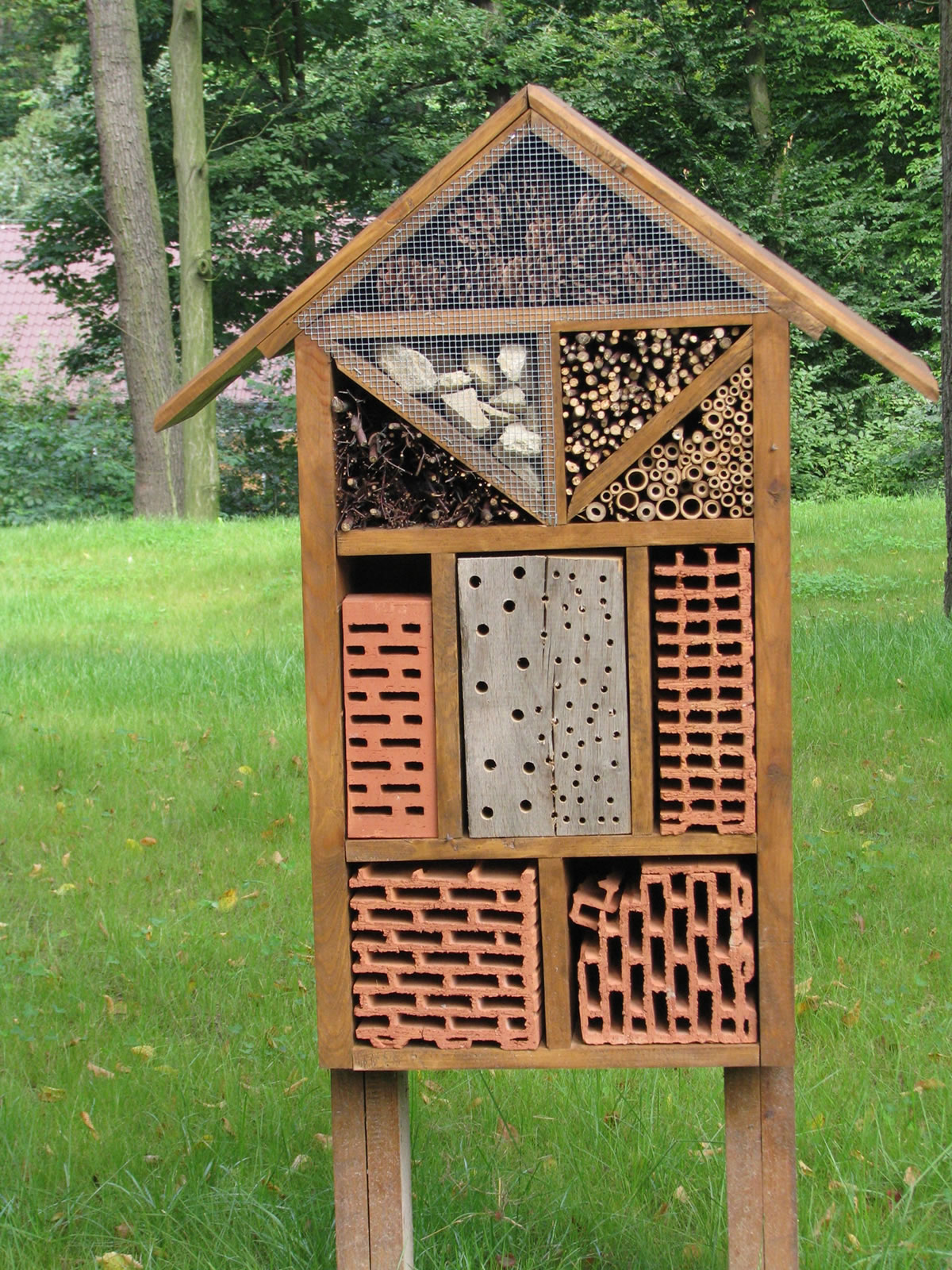 insect-house-1085197